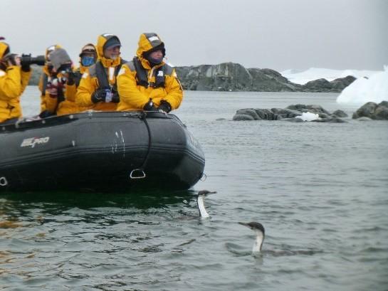 【スタッフレポート】南極圏と南極クルーズ14日間