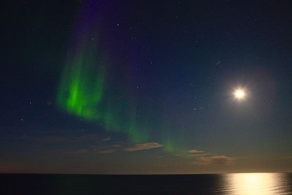 カナダ北極圏のオーロラ/北極クルーズ